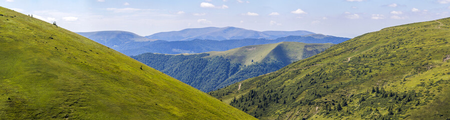 Canvas Prints Hill Panorama of green hills in summer mountains