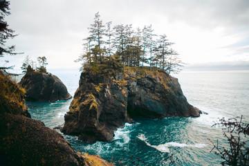 Rock in the Sea   Samuel H. Boardman State Scenic Corridor