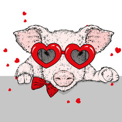 Piglet in clothes and accessories with hearts. Valentine's Day, love and friendship. Illustration for a postcard or a poster.