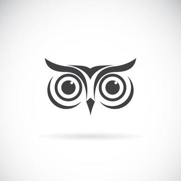 Vector of an owl face design on white background. Bird logo. Wild Animals.