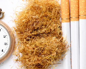 cigarettes and tobacco in the white background,addiction concept