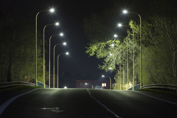 night road with streetlight, central view Fotomurales