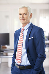 Senior professional man. A senior sales director businessman in suit looking at camera and smiling while standing at the office.