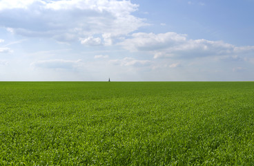 Altkirchen / Germany: View over an early green field to the lonely spire of the small village at the horizon