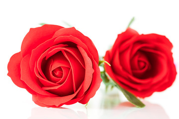 Red plastic fake roses on white