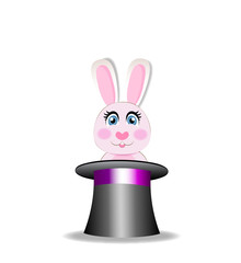 Rabbit in magic hat isolated on white background.