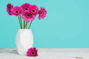 Happy Mother's Day, Women's Day, Valentine's Day or Birthday Pastel Candy Blue Coloured Background. Dark pink gerberas in a vase on a table with copy space.