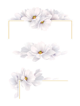 Set of three version design of decoration invitation or congratulation cards with elegant flower composition. Blooming white magnolias on the white background.