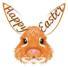 bunny, lapin, rabbit, animal,  pet, farm, fluffy, illustration, orange, holiday, easter, easter, easter bunny, egg, head, words