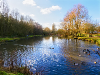 Small lake at Vicar Water park