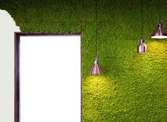 Green moss and lighting interior, background