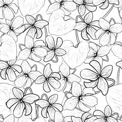 Viola odorata vector black lines seamless pattern