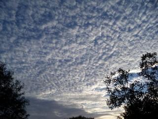 Mackerel sky sun rise
