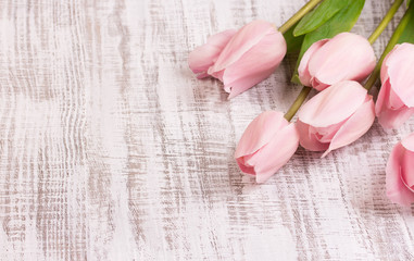 beautiful tulips on wooden background
