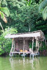 Madu Ganga, Balapitiya, Sri Lanka - Pit stop at a traditional river shop