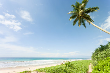 Balapitiya Beach, Sri Lanka - Close to paradise at the beautiful beach of Balapitiya