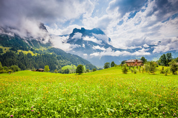 Alpine scenery with green meadows and traditional mountain chalet in Grindelwald, Switzerland Fotoväggar