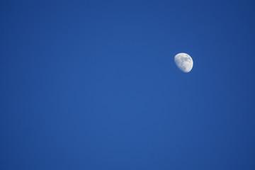 Blue sky monn