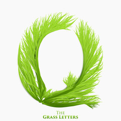 Vector letter Q of juicy grass alphabet. Green Q symbol consisting of growing grass. Realistic alphabet of organic plants. Spring and ecology typeset illustration.