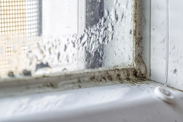 Mold and dirt on the window