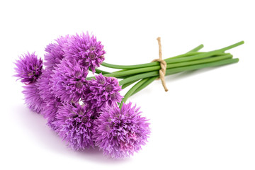 Chive flowers bunch tied