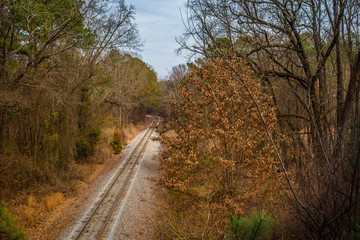 Aerial View of Railroad through the Forest