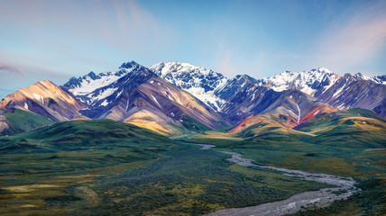 Alaska Denali National Park Wall mural