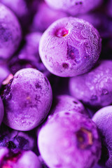 Vibrant Frozen Blueberries in Trendy Ultra Violet Color with Beautiful Frost Pattern and Texture. Summer Food Background for Blogs Posters Social Media. Elegant Creative Styled Image. Selective Focus