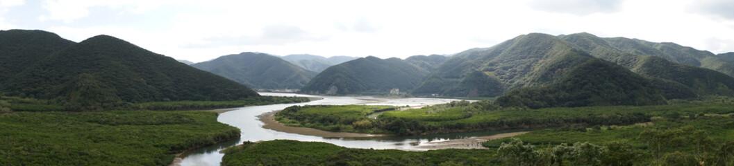 マングローブ原生林(奄美大島)