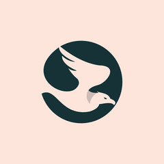 Eagle logo, flying hawk, falcon wing logo vector element