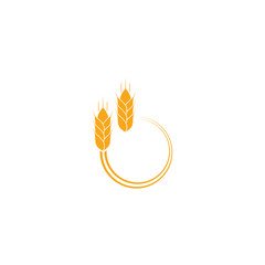 Golden wheat ears, agriculture vector element, organic bakery logo design