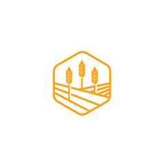 Golden wheat ears, agriculture vector element, organic bakery logo design