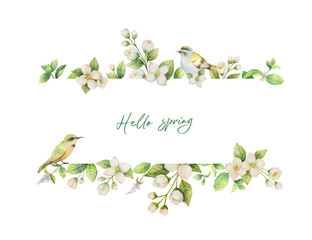 Watercolor vector banner with bird and flowers Jasmine isolated on white background.