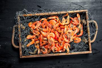Fototapete - Fresh shrimp in a fishing net on a tray.