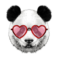 head Panda with glasses in heart shape sketch vector graphics color picture