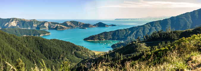 Queen Charlotte Sound in New Zealand Wall mural