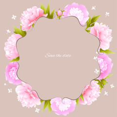 Peonies. Pink flowers. Flower pattern. Frame. Border. Vector illustration. Spring plants. Card.