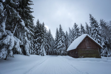 Winter landscape with wooden cottage. Lot of snow everywhere. Czech mountains.