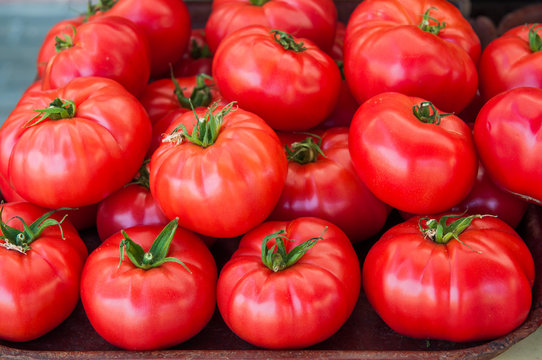 red large tomatoes