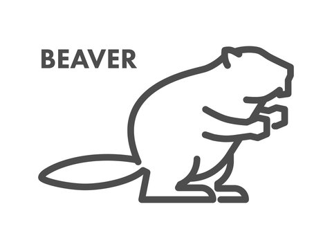 Vector line icon of beaver on white background