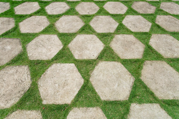 Green courtyard floor, decorated with stone slabs and grass lawn. Landscaping in Asia