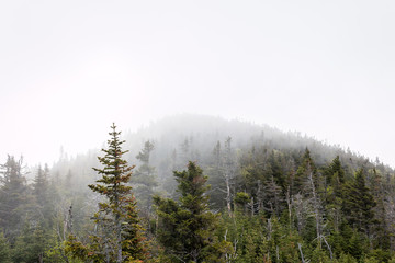 An Adirondack mountain remains barely visible through the fog.