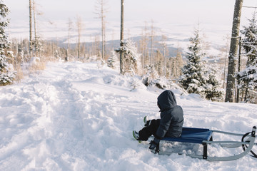 little boy in blue jacket  sit on sleigh