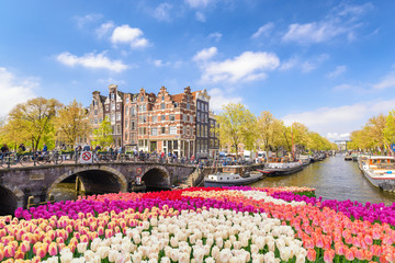Zelfklevend Fotobehang Centraal Europa Amsterdam city skyline at canal waterfront with spring tulip flower, Amsterdam, Netherlands