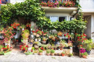 Street in Ohrid. Macedonia