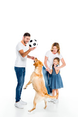family and golden retriever dog playing with football ball, isolated on white