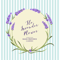 The lavender elegant card with frame of flowers and text. Lavender garland for your text presentation. Label of soap package. Label with lavender flowers. Vector illustration.
