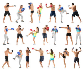 Set of boxers training on white background