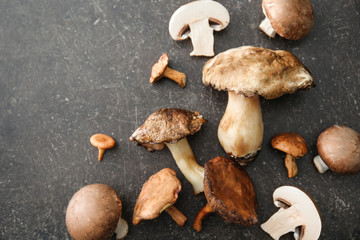Different mushrooms on grey background, top view