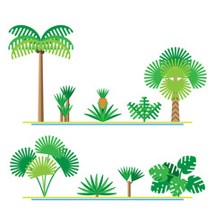 Set of tropical plants including palms, monstera, Yucca, dracaena, pineapple tree. Vector illustration in flat design.